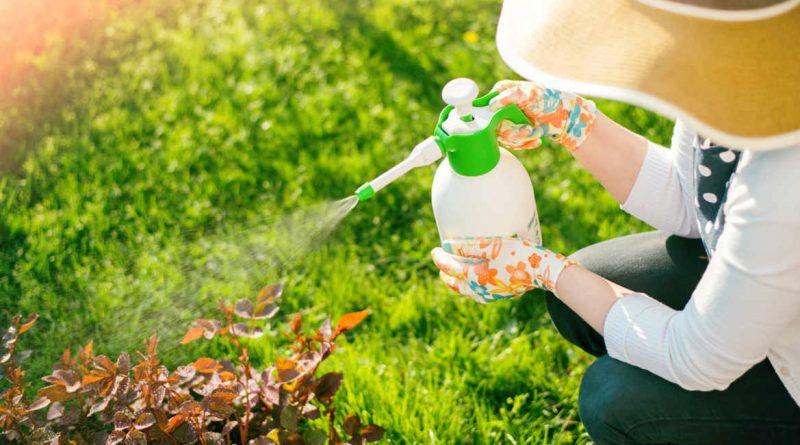 les problèmes des pesticides sur la santé